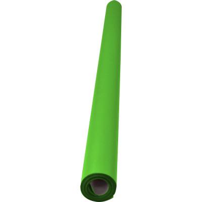 RAINBOW POSTER ROLL 85GSM 760mm x 10m Grass Green